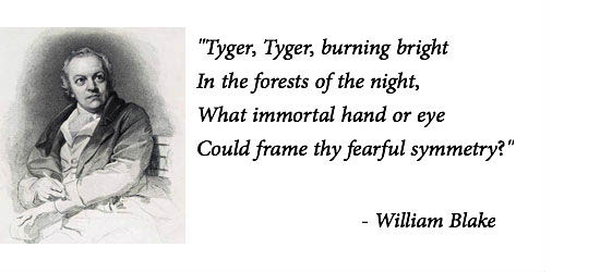William-blake-tyger-slider-550