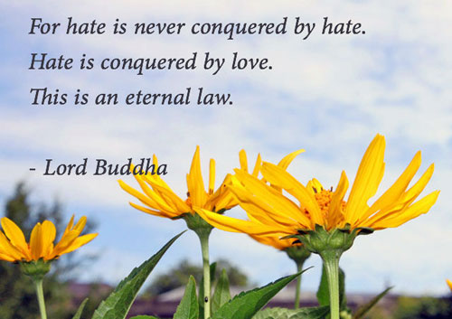 buddha-hate-love-slider-500-340