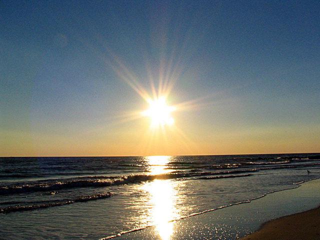 sun,sea