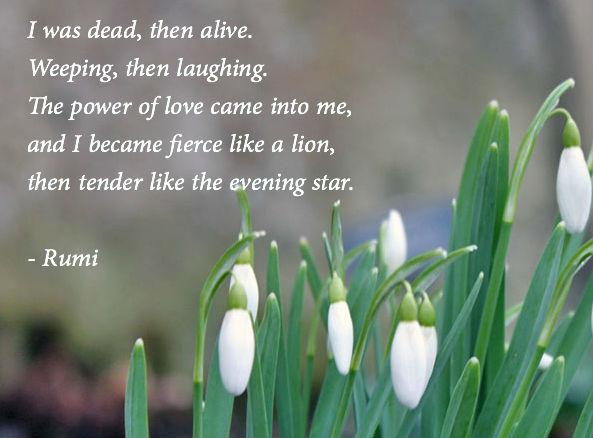Poet Seers » Sufi Poets