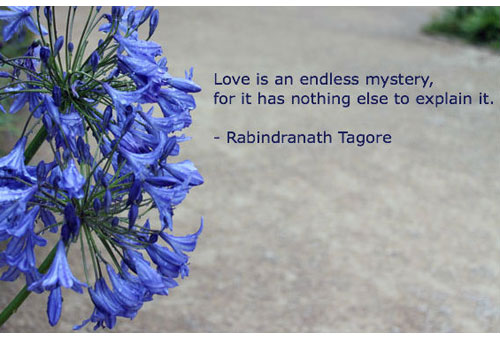 tagore-love-endless-mystery-slider-500-340